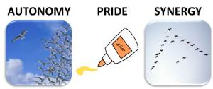 autonomy-pride-synergy