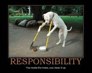 responsible-3